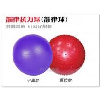 【1313健康館】 顆粒/平面 韻律抗力球(韻律球) 工廠直營 台灣製造 65公分規格