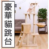 【1313健康館】貓跳台  豪華貓爬架 實木貓跳台 貓窩 貓抓板