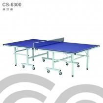 【1313健康館】Chanson強生牌 CS-6300型高級桌球桌(板厚18mm)專人到府安裝