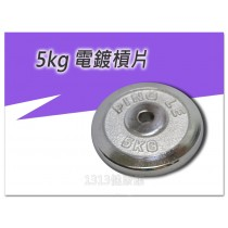 【1313健康館】5公斤啞鈴電鍍槓片 孔徑2.5公分 / 單片電鍍槓片 / 重量訓練